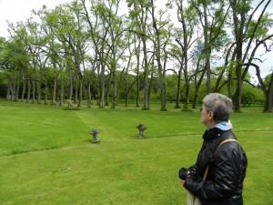 sur le côté de la drande allée de muriers le jardin antique et ses statues