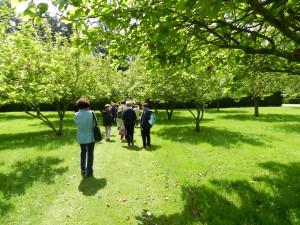 après le jardin exotique le sous bois et le verger suivi des magnolias...